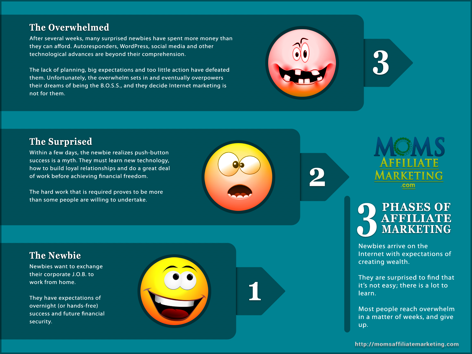 affiliate marketing beginners infographic